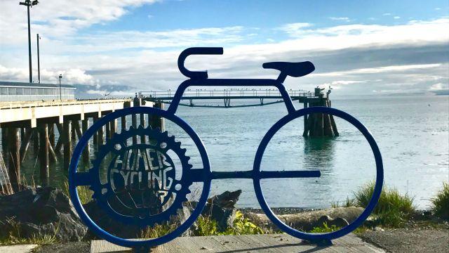 Homer, AK Bicycle
